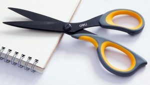 Канцелярские ножницы: описание и правила работы с ними
