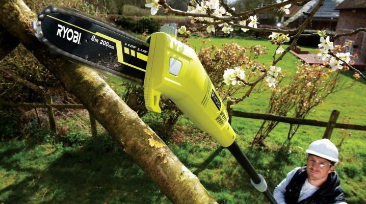 Особенности садовых электрических высоторезов