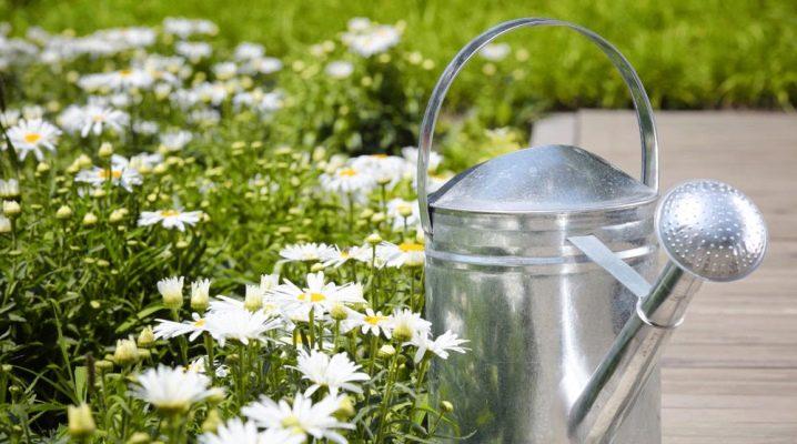 Садовые лейки: особенности, виды и советы по выбору