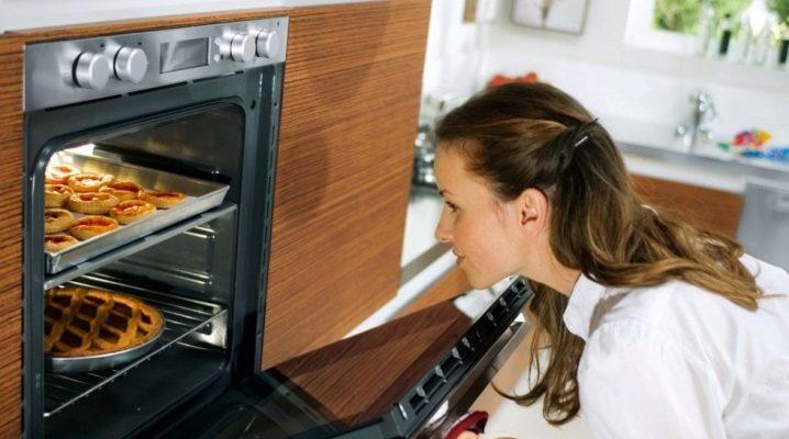Встраиваемые газовые духовые шкафы с конвекцией: особенности, советы по выбору