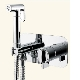 Особенности настенных смесителей для биде с гигиеническим душем