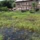 Особенности выбора и создания фундамента на болоте