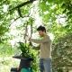 Садовые измельчители: назначение, виды и популярные модели