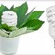 Энергосберегающие лампы для растений: особенности, выбор и эксплуатация