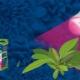 Как правильно выбрать лампы для выращивания растений?
