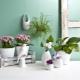 Керамические горшки для цветов: особенности, размеры и дизайн