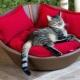 Кровать для кошки: особенности и тонкости изготовления