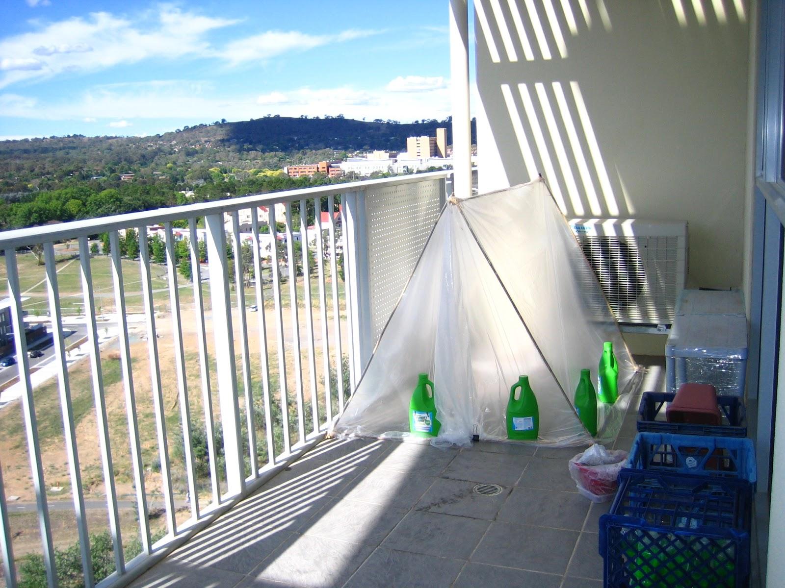 Парник для балкона: балконные мини-теплицы своими руками, ра.