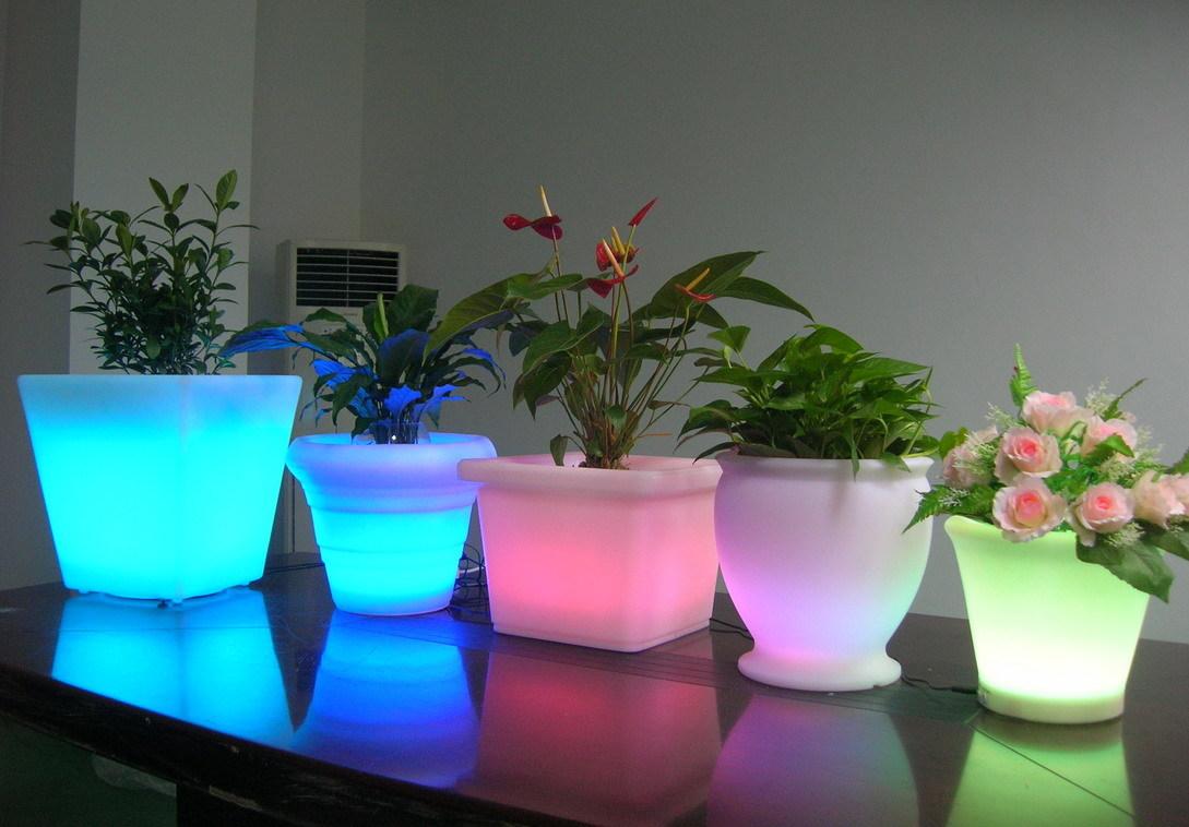 Как сделать цветы с подсветкой