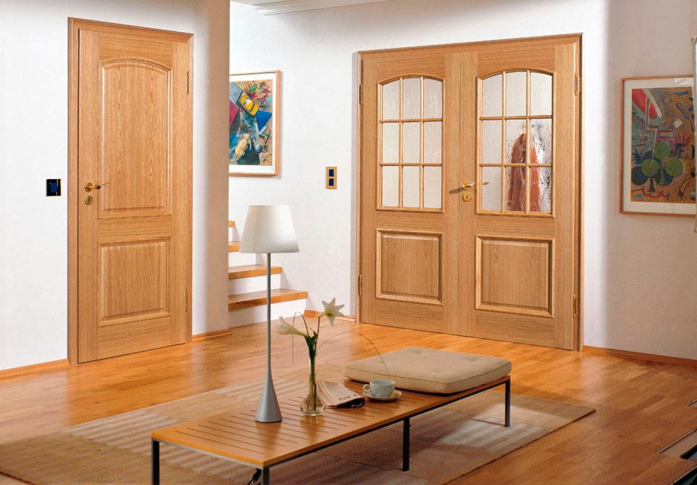 распространенный дизайн двери