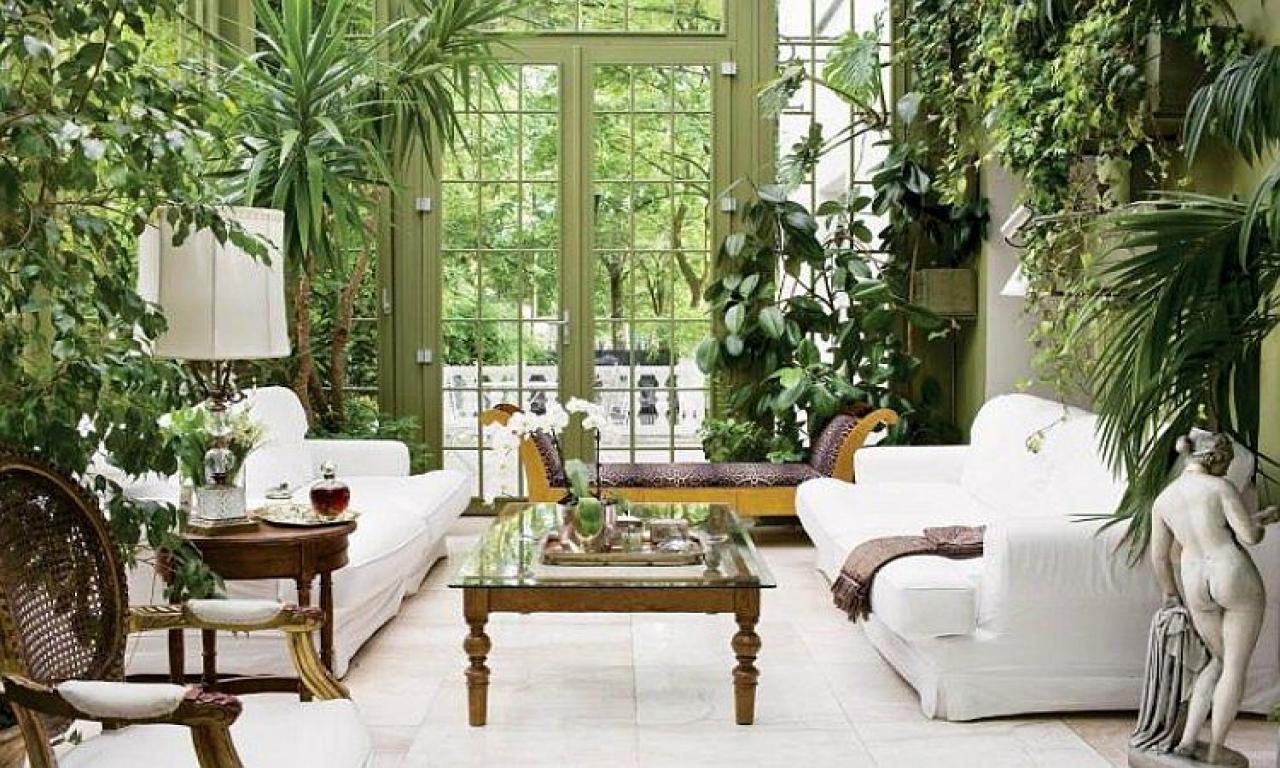 Комнатные растения и как правильно размещать их в доме Часть 1. Гостиная