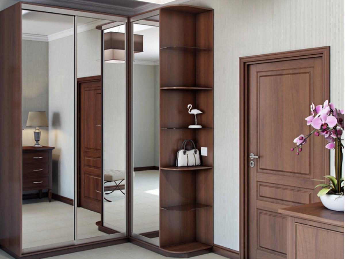 Зеркальный шкаф в прихожую (34 фото): поворотные модели для .
