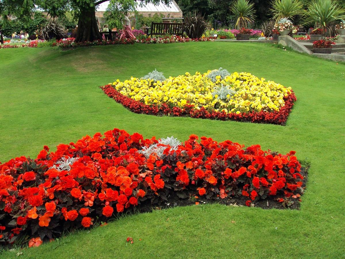 Ассортимент цветов в клумбе фото