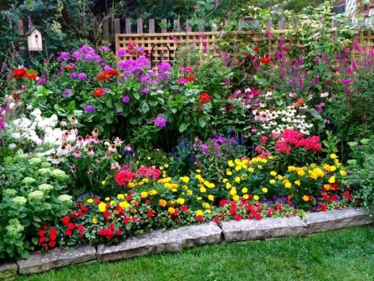 фото первых цветов весной