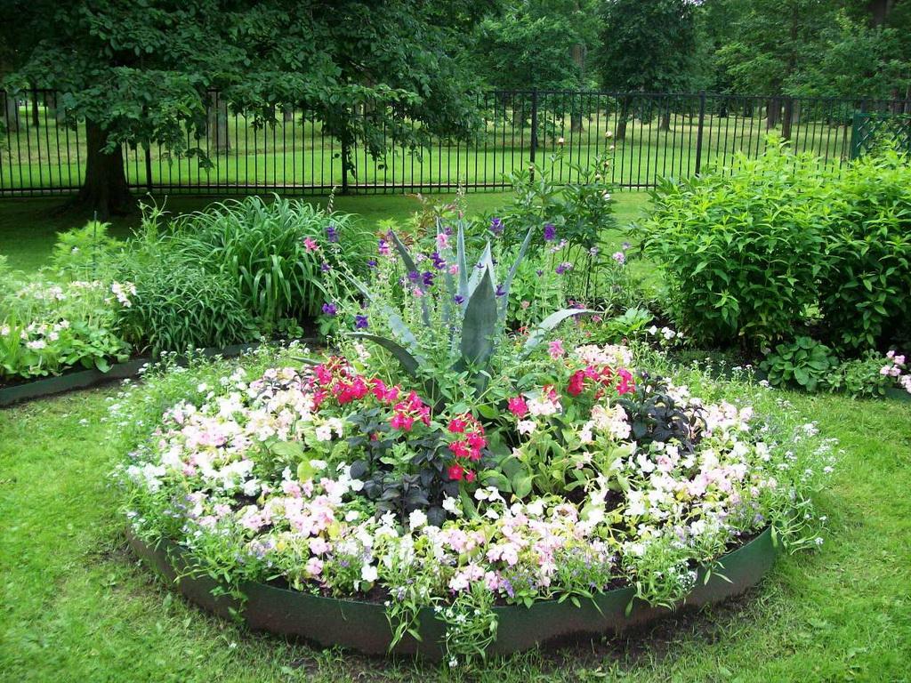 Фото красивых цветочных клумб на даче своими руками 97