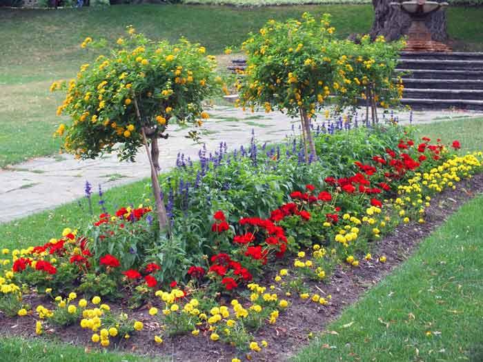 Рабатки клумбы и цветники на даче своими руками фото 876