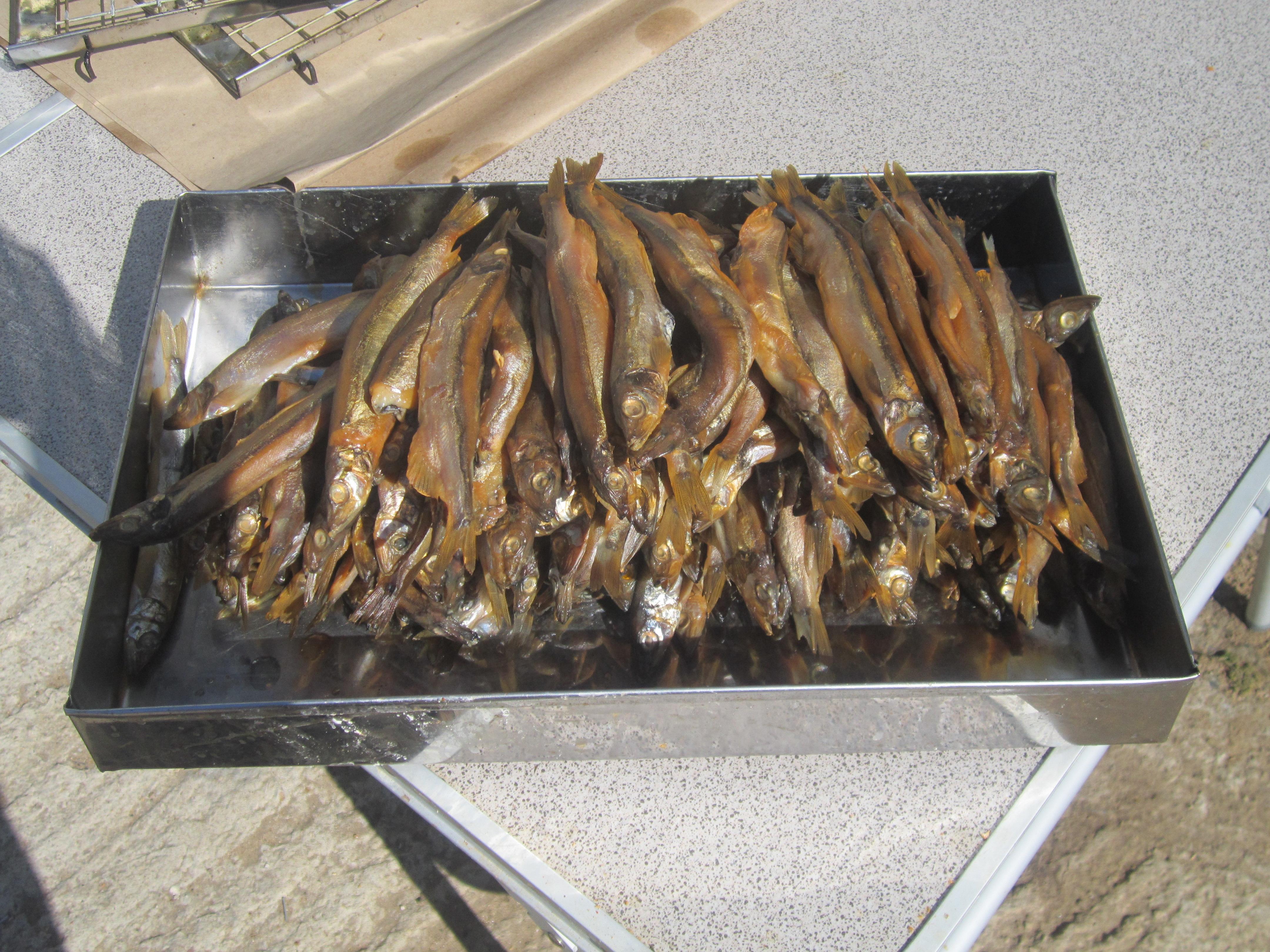 Как коптить рыбу в коптильне - Твой Поваренок 20