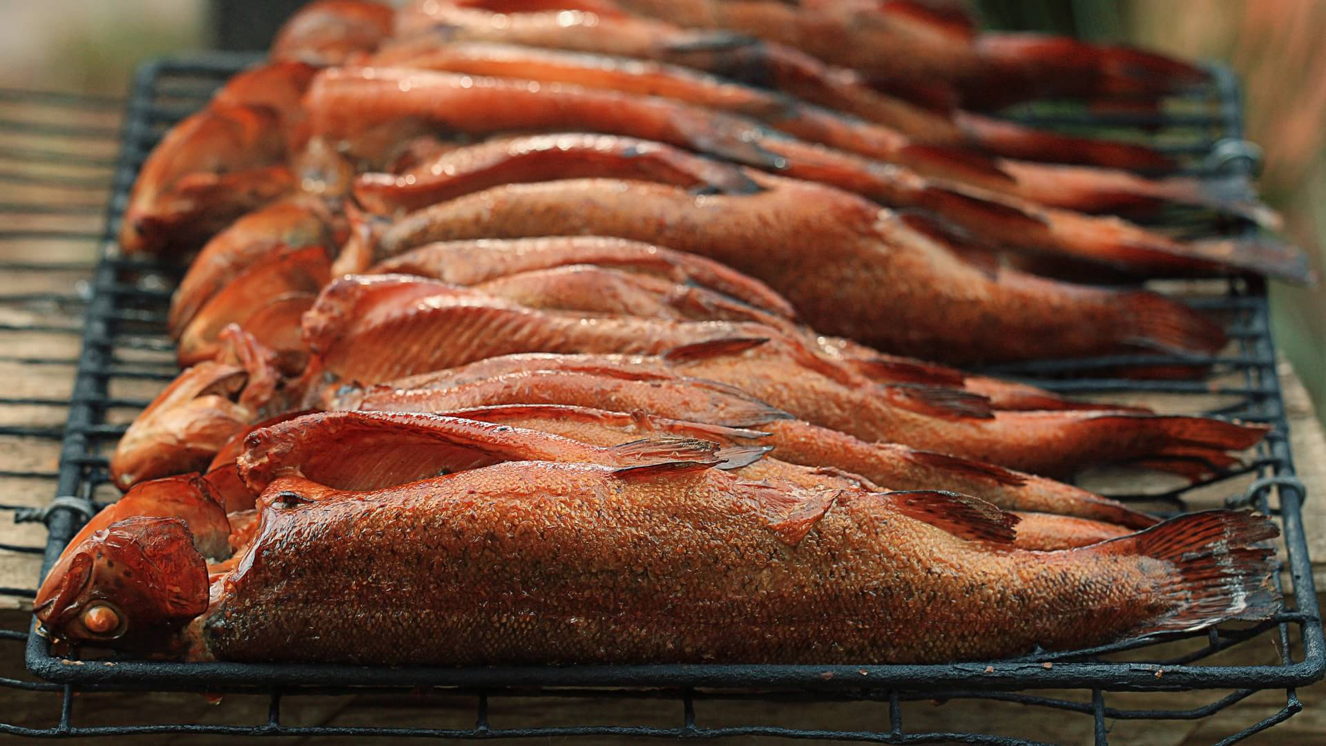 Рыба горячего копчения в духовке : рецепты в домашних условиях 45