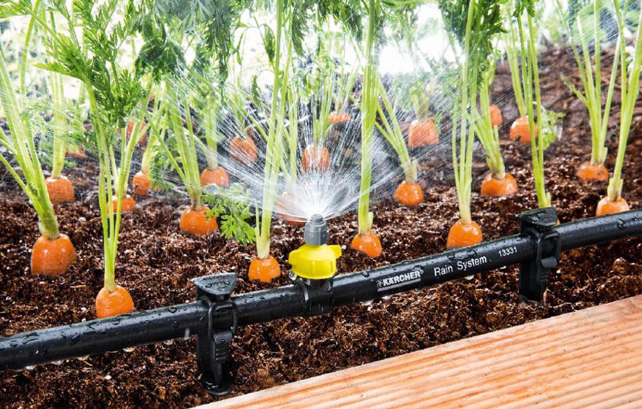 Системы автоматического полива теплицы, автоматический капельный полив в теплице