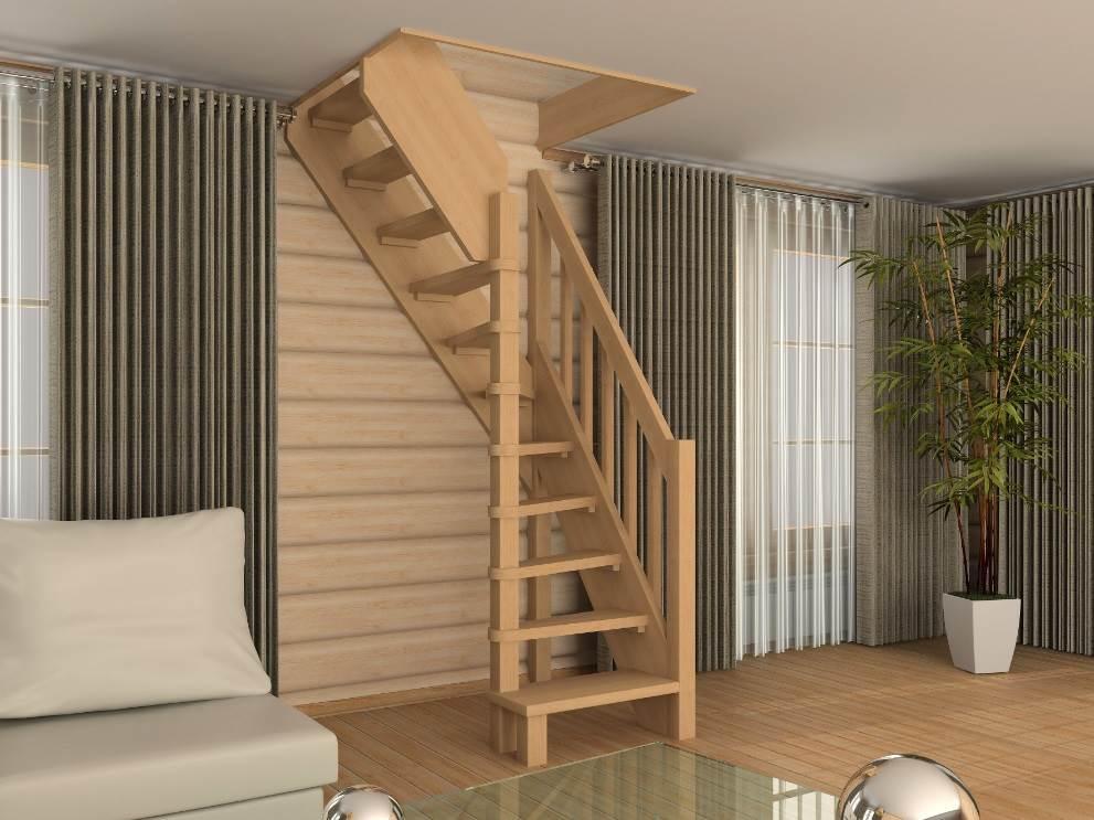 соцветия ярко-красного лестницы в дачном доме фото живые