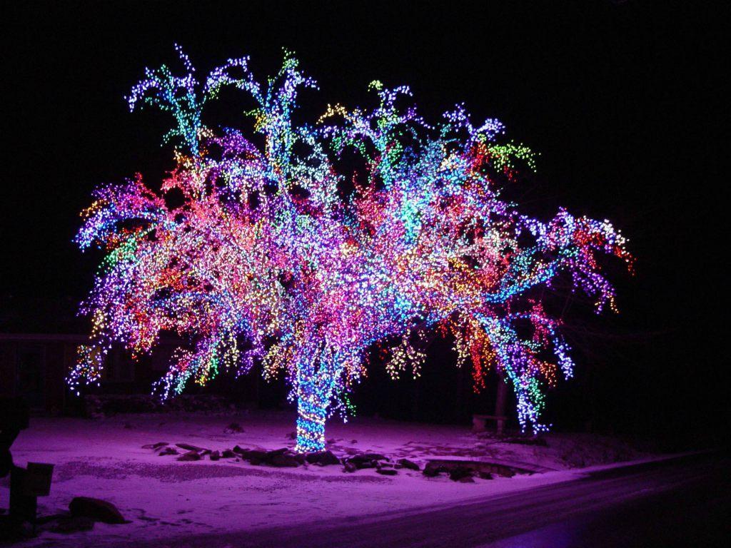 Новогодний лес картинки на рабочий стол подходящей тканью