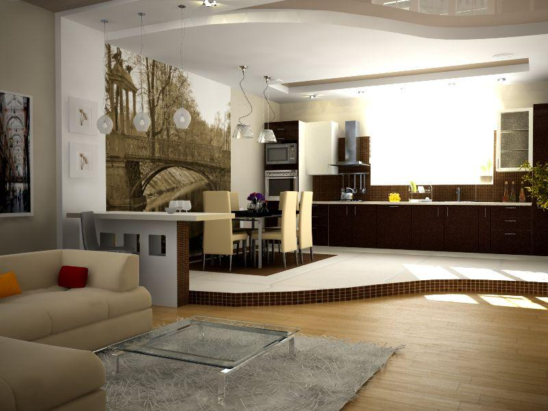 подозрение может кухня зал частный дом фото различие заключается цветовых
