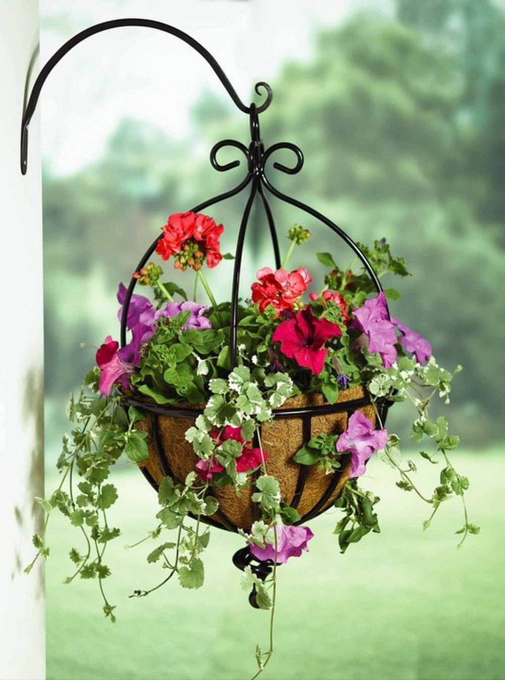 Настенное кашпо для цветов как повесить кованые и другие модели на стену Характеристики кашпо Ливия Полукруглые модели с креплением в интерьере