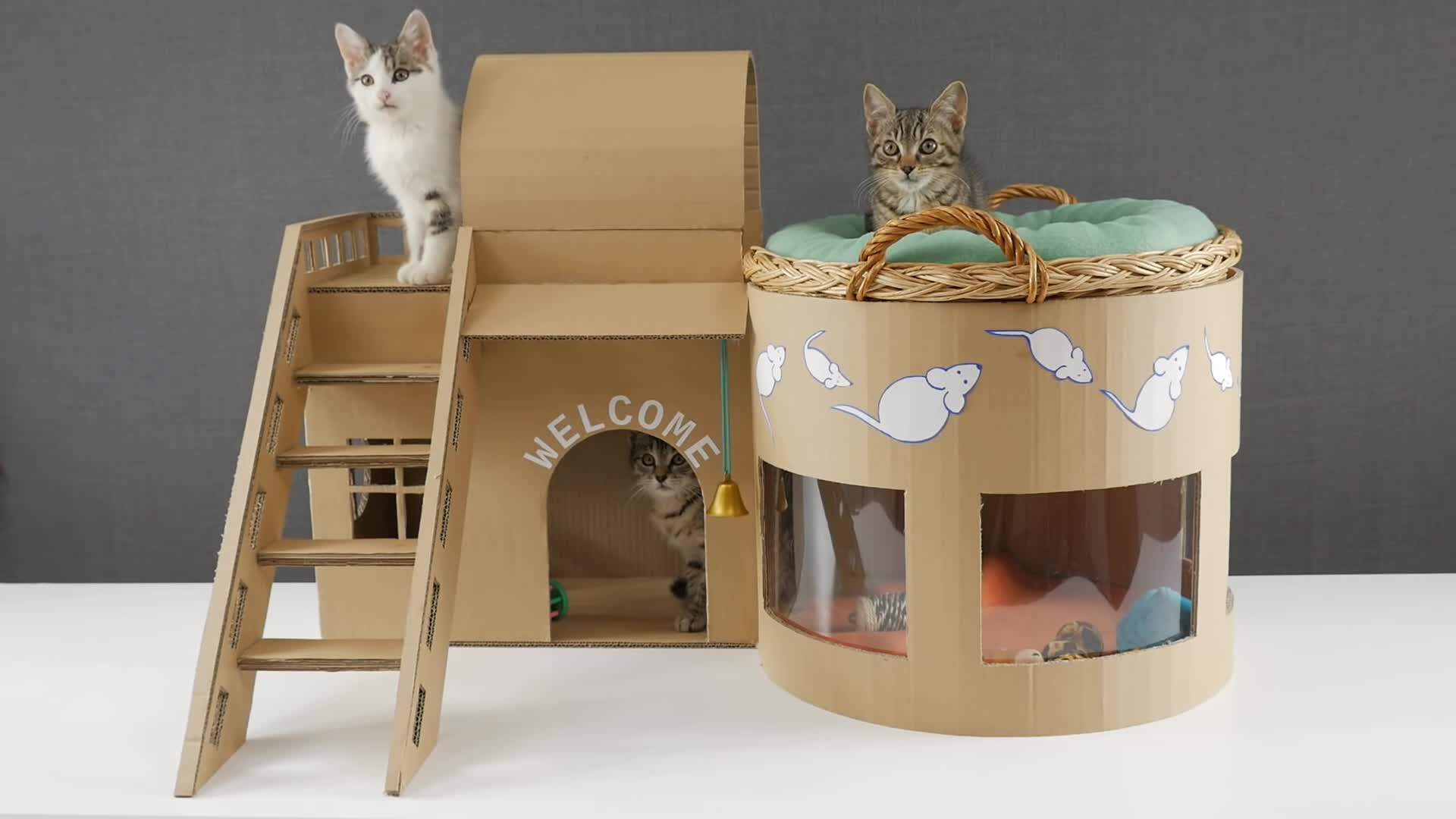 Домики для котов своими руками фото из коробок фото 39