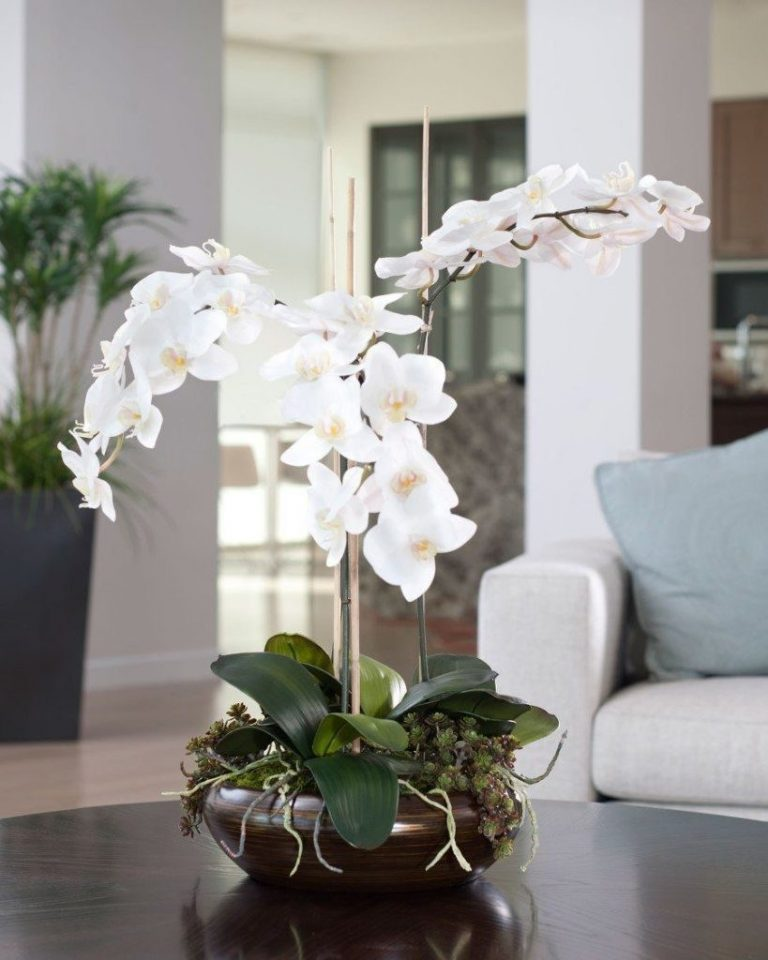 Орхидея с мелкими белыми цветами