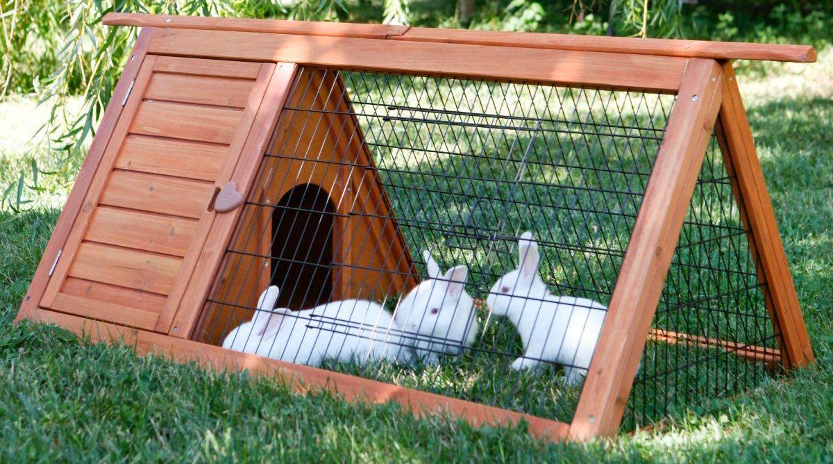 Как сделать вольер для кроликов своими руками