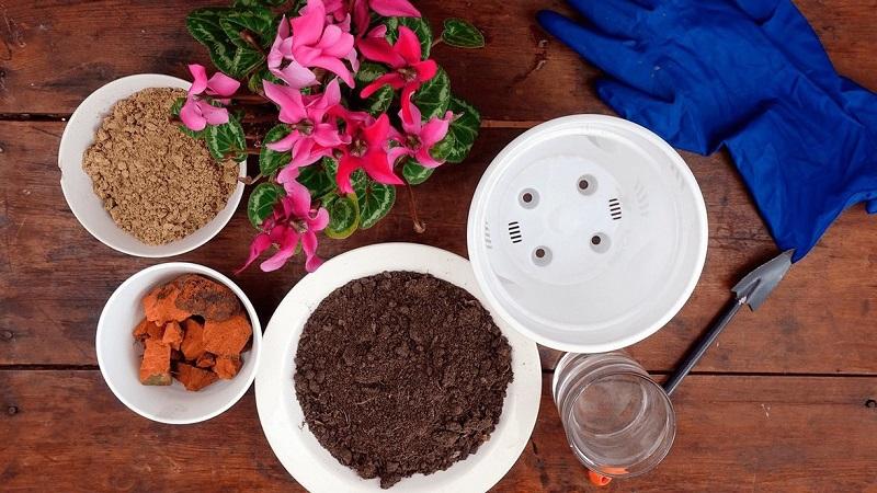 Дренаж для комнатных растений: как сделать, чем заменить в домашних условиях