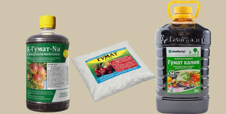 Гумат калия - полезные свойства, инструкция по применению