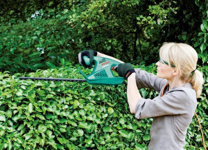 Как выбрать кусторез для дачи? Виды садовых кусторезов, рейтинг лучших