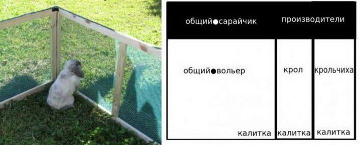 kak-sdelat-voler-dlya-krolikov-5.jpg