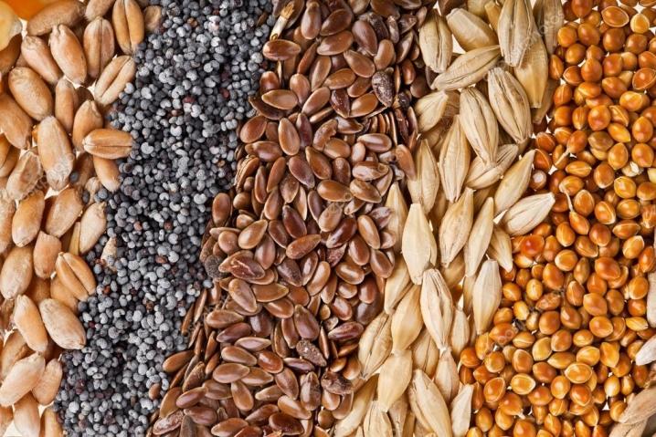 петуния какие семена лучше покупать