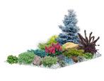 Рокарий на дачном участке: тонкости ландшафтного дизайна